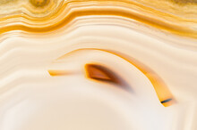 Detail Of Texture Of Brazilian Agate In Macro Photography