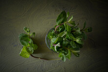 Top View Of Fresh Green Mint Sprigs With Aromatic Leaves In Transparent Glass With Pure Aqua On Dark Background