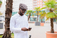 Trendy African American Male Standing On Street With Palm Trees And Messaging On Social Media Via Mobile Phone