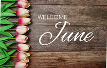 Welcome June Text And Tulip Flower Decoration On Wooden Background