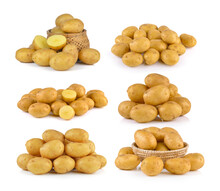 Potato In The Basket Isolated On White