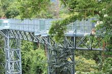 Canopy Walkway Bridge Over The Trees