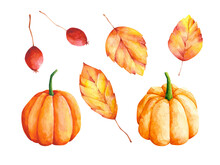 Watercolor Autumn Clip Arts Set. Fall Leaves, Pumpkins And Berries Illustrations Isolated On White Background. Botanical Design Elements Collection.