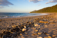 Beach At Gentle Annie New Zealand, West Coast, South Island