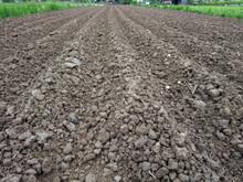 Plowed Field With Soil