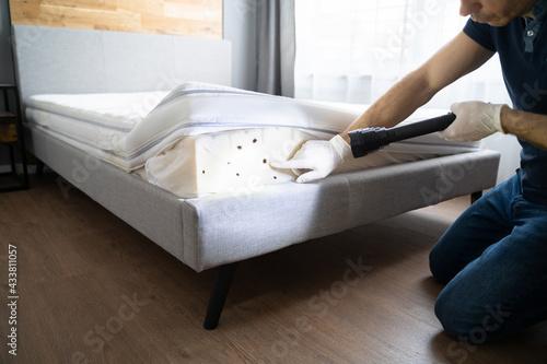 Fotografie, Tablou Bed Bug Infestation And Treatment Service