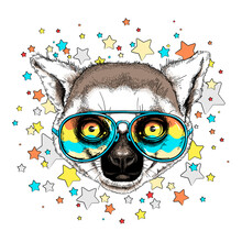 Cute Ring-tailed Lemur Head On A Background Of Stars. Image For Printing On Any Surface