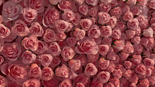 Bright, Elegant Flower Blooms Arranged In The Shape Of A Wall. Romantic, Beautiful, Roses Composed To Create A Red Floral Background. 3D Render