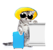Funny Cat Wearing Summer Hat And Sunglasses Holds Suitcase An Shows Empty List. Isolated On White Background.
