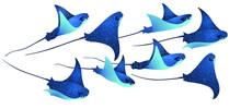 Devilfish Marine Animals, Manta Ray Fishes, Sea Creatures Set Vector Illustration. Blue Eagle Ray Fishes, Manta Ray Scuba Vector. Eagle Or Devil Fish Group, Underwater Devilfish Giant Ocean Animals.