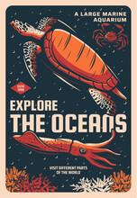 Sea Turtle, Stone Crab And Giant Squid In Marine Aquarium Sketch Vector Banner. Ocean Animals And Tropical Deep Sea Exotic Creatures, Oceanarium Wildlife Exhibition Vintage Poster