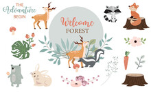 Cute Woodland Object Collection With Skunk,bear,fox,deer,stump And Leaves.Vector Illustration For Icon,sticker,printable