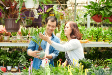 Adult Son Helping Mother To Choose Cycas Plant In Plant Nursery