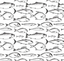 Seamless Pattern With Fish Drawn By Graphics. Texture For Fabric, Wrapping Paper, Postcards.