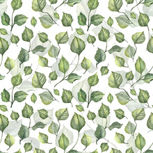 Seamless Pattern With Hand Painted Watercolor Green Leaves