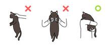 猫の抱き上げ方 良い例と悪い例 黒猫