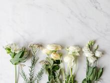 Various White Flowers Border On Marble Background.