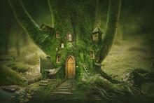 Magic Tree Home