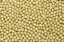 Dried Whole Peas, Background, From Above. Raw Small Spherical Seeds Of The Pod Fruit Pisum Sativum With Greenish And Yellowish Color, Mostly Used For Soups. Backdrop. Close-up, Macro Food Photo.