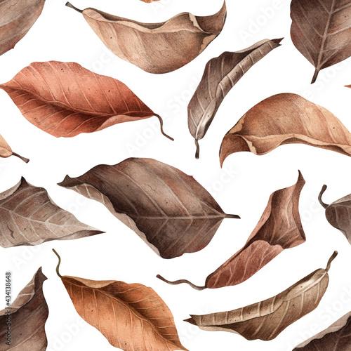 Billede på lærred Dried flowers pattern