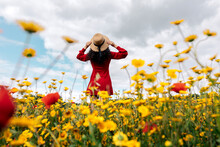 Back View Anonymous Trendy Female In Red Sundress Standing On Blossoming Field With Yellow And Red Flowers And Touching Hat On Warm Summer Day