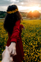 Anonymous Female In Flower Wreath Holding Crop Beloved By Hand On Meadow With Blossoming Daisies Under Cloudy Sky At Sunset