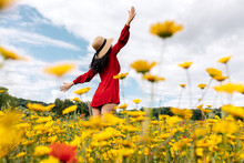 Back View Anonymous Trendy Female In Red Sundress Standing On Blossoming Field With Yellow And Red Flowers With Outstretched Arms On Warm Summer Day