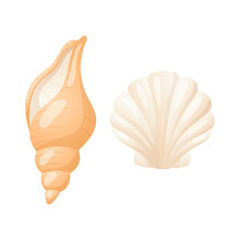Vector Isolated Illustration On White Background. Set Of Two Realistic Seashells. Shell With Pearls And Clam. An Element Of Design On The Theme Of Marine Life And Summer Vacations.