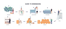 Guide To Winemaking Process - From Ripening Grapes To Natural Wine.