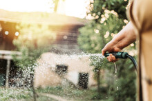 Female Hand Holding Gardening Hose, Watering Garden
