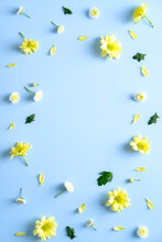 Floral Flat Lay Composition With Yellow Daisy Flowers On Blue Background. Flat Lay, Top View, Copy Space.