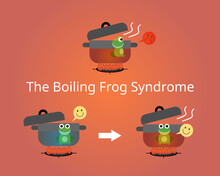 The Boiling Frog Theory To Describe A Frog Being Slowly Boiled Alive
