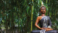 Buddha Statue In Rain With Bamboo Background