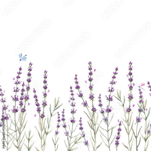 Tapety Prowansalskie  piekny-bezszwowe-kwiatowy-wzor-prowansji-z-akwarela-recznie-rysowane-delikatne-kwiaty-lawendy-ilustracji