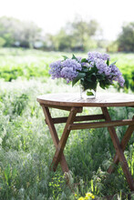 Bouquet Of Lilacs On The Table In The Summer Garden