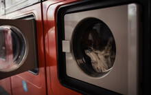 View Of Washing Machine In A Laundromat