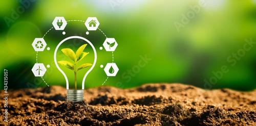 Fotografie, Obraz Sustainable energy sources concept