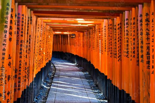 Obraz na plátně Vermillion Gates At The Fushimi Inari Shrine, Kyoto, Japan