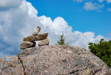 Cairn On Pemetic Mountain Trail Acadia National Park, Maine