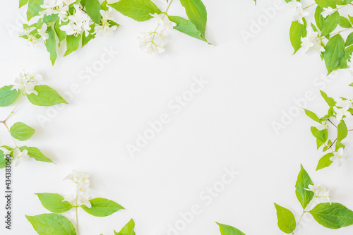 Canvastavla Flat lay composition with branches and green leaves, jasmine flowers on a white