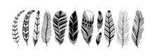 Rustic Decorative Feathers Vector Collection. Hand Drawn Black Tribal Bird Feathers. Ink Illustration Isolated On White Background. Ethnic Boho Style Hand Drawing. Outlined Graphic Ornament.