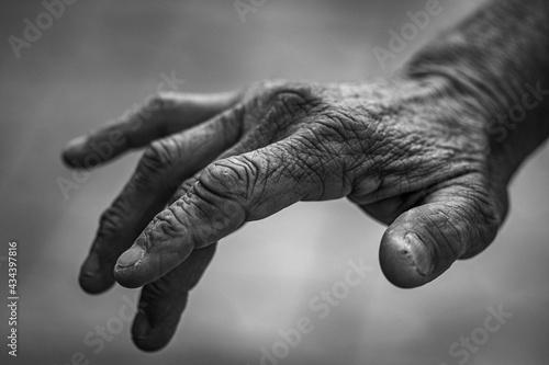Canvastavla Close-up Of Senior Woman Hand
