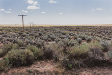 The Old Route 66 Covered In Brush And Lined With The Old Telephone Poles