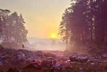 Dawn In The Altai Mountains. Tall Pines On The Rocks, Houses On The Horizon In The Morning Mist. Nature Of Siberia, Russia
