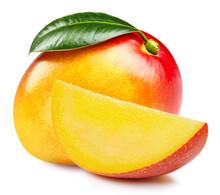 Orange Mango. Fresh Organic Mango Fruit Isolated On White Background. Mango And Slice Macro