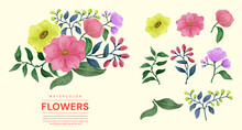 A Set Of Flowers Painted In Watercolor For Various Cards And Greeting Cards.