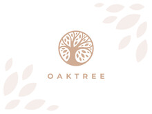 Circle Oak Tree Logo Icon Sign. Abstract Round Garden Plant Natural Symbol. Branch With Leaves Template. Vector Illustration.