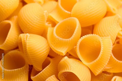Fotografiet Lumache, pasta tradizionale della cucina Italiana