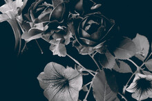 Dark Roses And Garden Flowers, Abstract Bouquet On A Dark Background. Black And White Image.