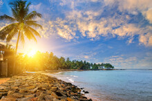 Beautiful Sunset Tropical Beach With Palm Tree And Sky
